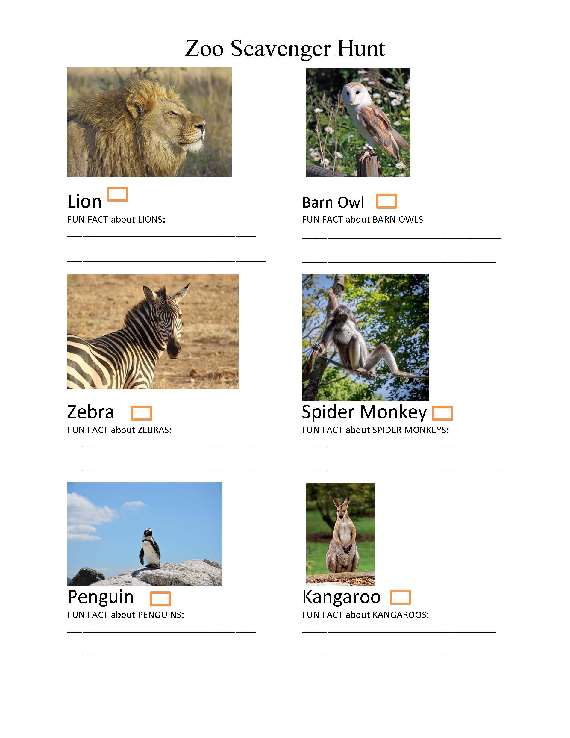 image relating to Zoo Scavenger Hunt Printable identify Parenting towards the Reasonably priced Seats- Zoo Scavenger Hunt (Cost-free